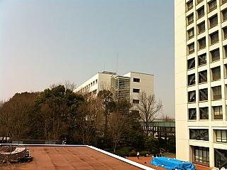 let.lang.nagoya-u.ac.jp_149.jpg